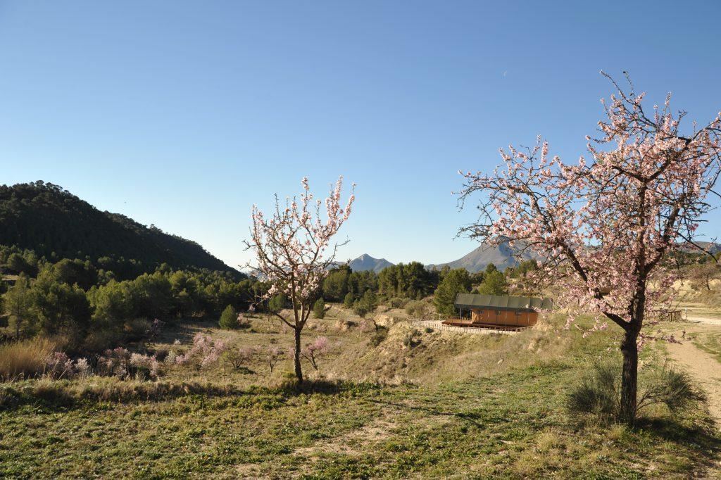 yoga retreat Alicante